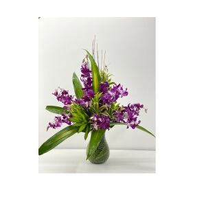 Medium orchid in vase