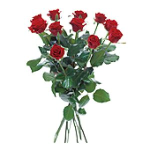Bouquet with 12 red roses